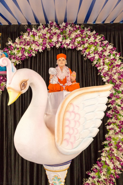 Divine darshan of Jeevanpran Shree Muktajeevan Swamibapa seated on a magnificent white swan