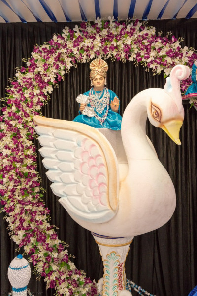 Divine darshan of Jeevanpran Shree Abji Bapashree seated on a magnificent white swan