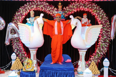 Divine darshan of His Divine Holiness Acharya Swamishree with the magnificent swans