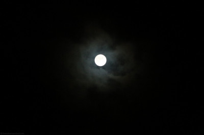 On Sharad Poonam, the moon is nearer to the earth and therefore looks brighter and larger than it would look on any other full moon night