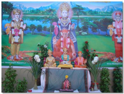 The divine darshan of Fuldol Decoration
