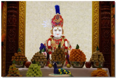 Divine annakut darshan of Lord Shree Swaminarayan