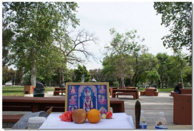 Divine darshan of Lord Shree Swaminarayan outdoors