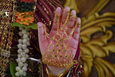 Divine darshan of the divine lotus left hand of Lord Shree Swaminarayan