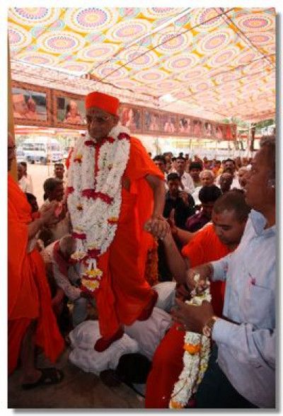 Disciples give their backs to escort Acharya Swamishree to the stage