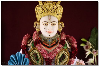 Divine darshan of Lord Swaminarayan