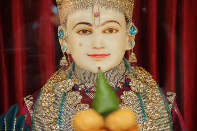 Divine darshan of Lord Shre Swaminarayan