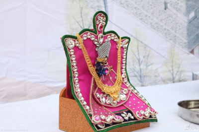 Divine darshan of Shree Hari Kirshna Maharaj