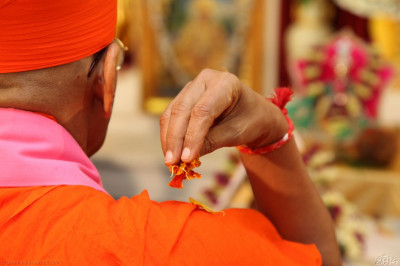 His Divine Holiness Acharya Swamishree showers fresh fragrant flower petals at the lotus feet of Lord Shree Swaminarayanbapa Swamibapa as the divine 108 names of the Lord are recited