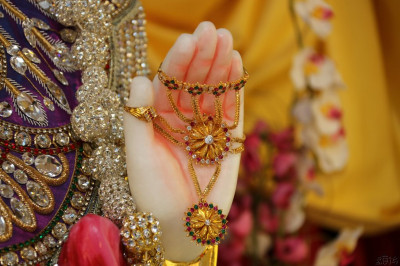 Divine darshan of the left hand of Lord Shree Swaminarayan