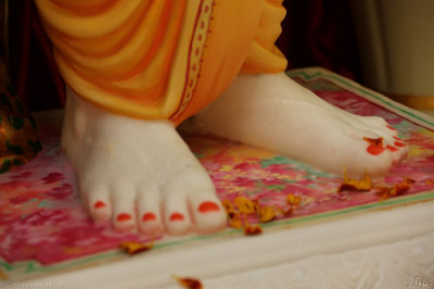 Divine darshan of the lotus feet of Jeevanpran Shree Abji Bapashree