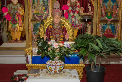 Divine darshan of Lord Shree Swaminarayan seated on Shree Swaminarayan Gadi with newly blossoming mango trees, on the first day of spring