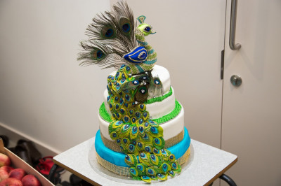 The peacock themed anniversary cake