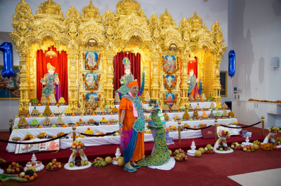 Divine darshan of His Divine Holiness Acharya Swamishree in front of the magnificent annakut