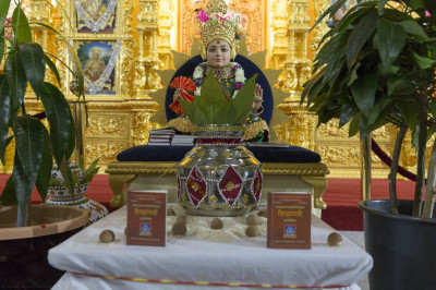 Divine darshan of Lord Shree Swaminarayan with young mango plants