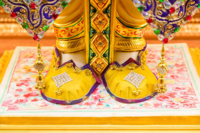 Divine darshan of the lotus feet of the Lord