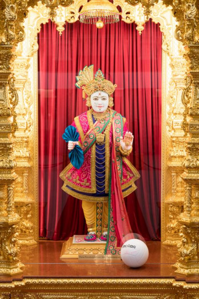 Divine darshan of Lord Shree Swaminarayan with the volleyball ball