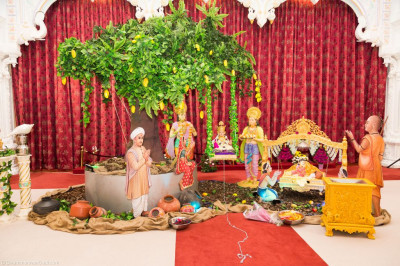 Divine darshan of Lord Shree Swaminarayan within the charming village scene
