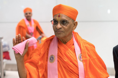 Divine darshan of His Divine Holiness Acharya Swamishree in London