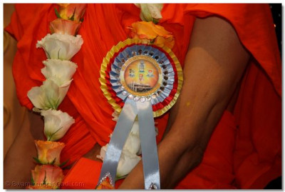 A close up view of the 10th Anniversary badge worn by His Divine Holiness Acharya Swamishree