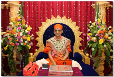 The Divine Darshan of His Holiness Acharya Swamishree