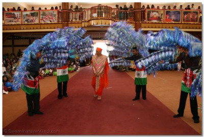 His Divine Holiness Acharya Swamishree is covered and led into the temple hall by four disciples holding large peacock feathers