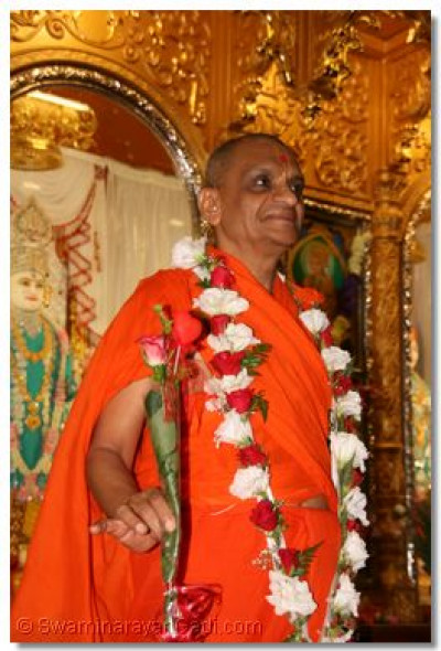 Acharya Swamishree with a rose offered from loving devotees