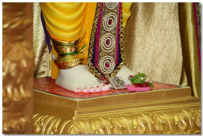 A close up of the divine lotus feet of Lord Shree Swaminarayan.  Disciples offer a large diamond and fresh fragrant flowers