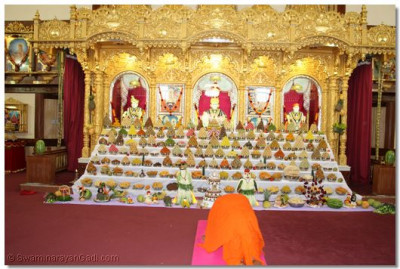 His Divine Holiness Acharya Swamishree performs the darshan of Lord Shree SwaminarayanBapa Swamibapa
