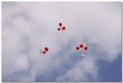Helium balloons realed in the sky