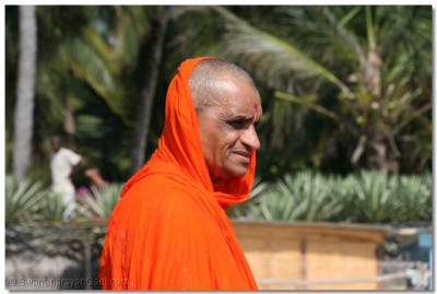 Divine darshan of Acharya Swamishree during the rangotsav