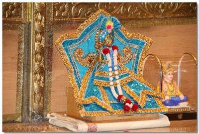 Divine darshan of Shree Hari Krishna Maharaj