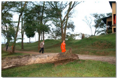 Clear skies and the fresh breeze surrounding Acharya Swamishree during his walk