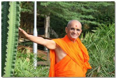 Acharya Swamishree merciful stance