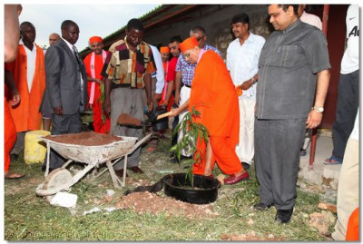 Tree planting ceremony at the school