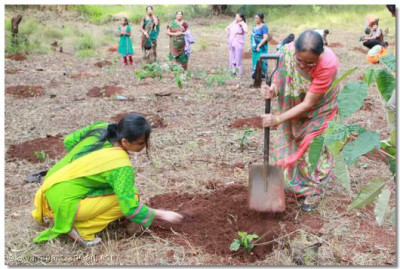 Devotees take part in the tree planting ceremony