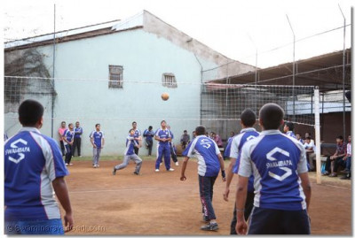 Developing team playing volleyball.