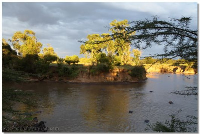 A splendid view of the Mara River from the lodge