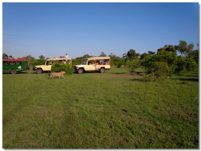 Sant mandal and devotees go for a Safari Game drive