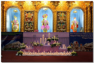Divine darshan of Lord Swaminarayan, Jeevanpran Bapashree and Mutkajeevan Swamibapa