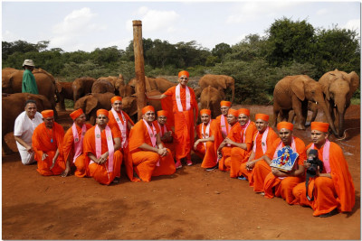 Acharya Swamishree and sant mandal with the elephants