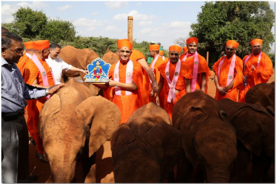 Sants and devotees with elephants