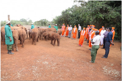 The elephant group comes for blessings
