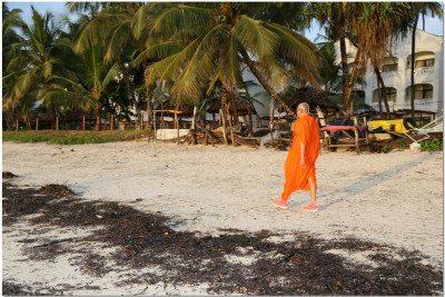 Acharya Swamishree for a morning walk