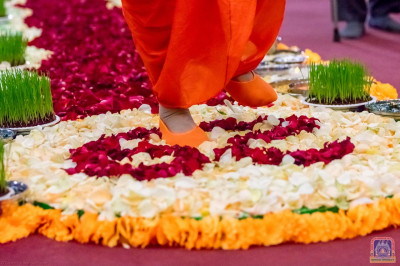 His Divine Holiness Acharya Swamishree walks on the beautifully decorated walkway of rose petals