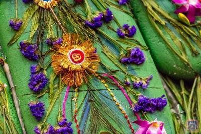 Rakhis used for the peacock theme hindolo
