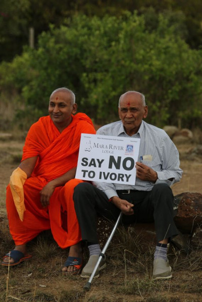 'Say NO to ivory'