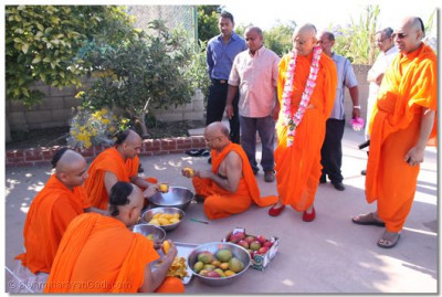 Acharya Swamishree offers His darshan as sants cut mangoes