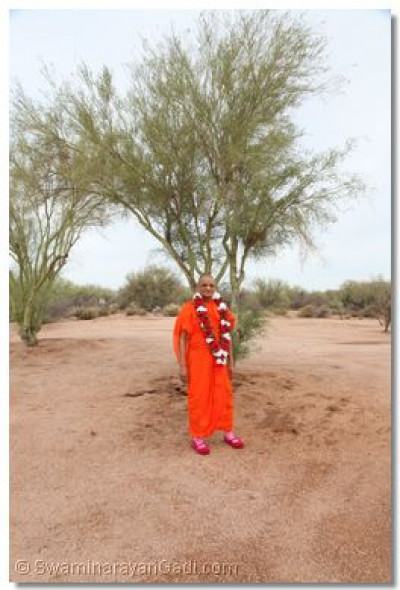 Divine darshan of Acharya Swamishree with the desert landscape in the background