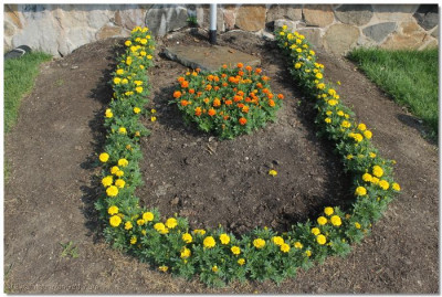 A flower bed in front of the temple resembles the tilak-chandlo